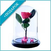 Роза в стеклянной колбе (28 см)